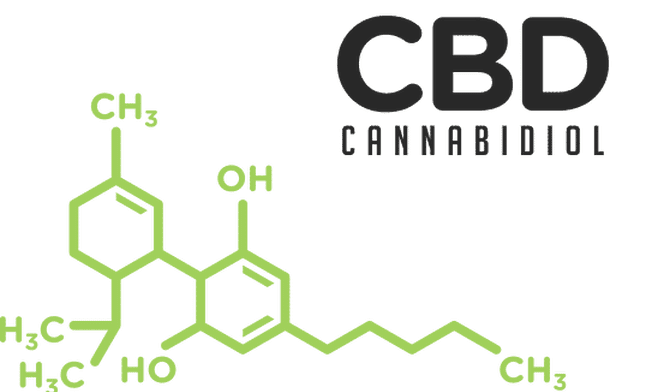 SEO: Digital Marketing for CBD Websites
